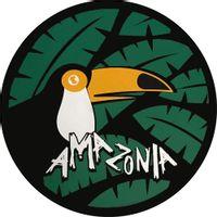 Capa-de-Estepe-Amazonia-Citroen-Aircross-2010-2011-2012-2013-2014-2015-2016-2017-Aros-13-14-15-16-Polegadas-com-Cadeado